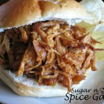 Slow Cooker Apricot Pulled Pork