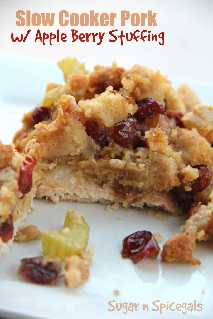 slow-cooker-pork-with-apple-berry-stuffing-2